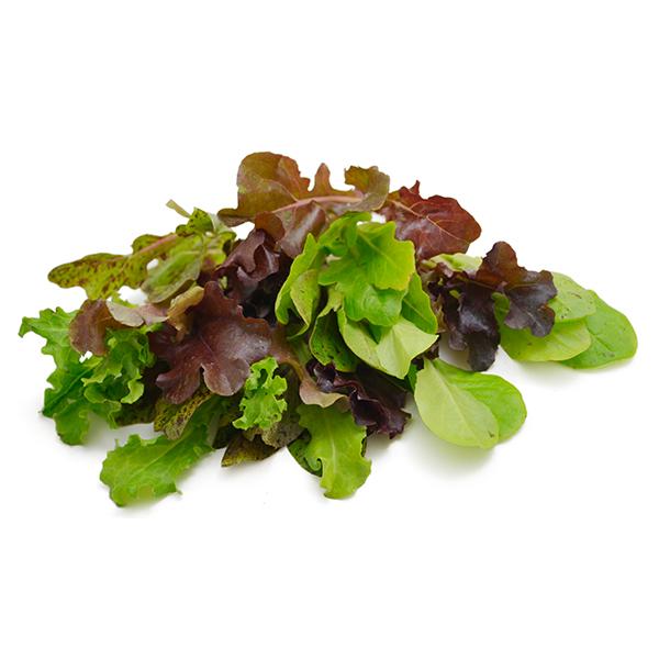 เบบี้ลีฟ (Baby Leaf Lettuce)